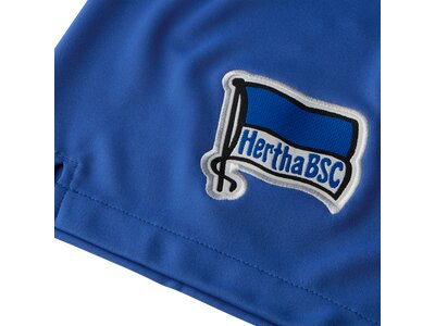 NIKE Herren Fanshorts HERTHA BSC Blau