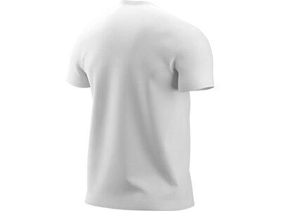 NIKE Herren Shirt JUMPMAN FLIGHT HBR TEE Grau