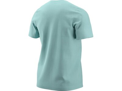 NIKE Herren T-Shirt Grau