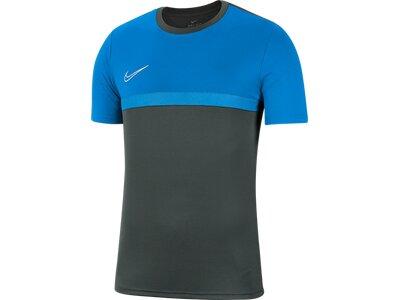 NIKE Herren T-Shirt Dri-FIT Academy Pro Grau