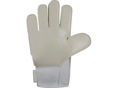 NIKE Kinder Handschuhe Nk Gk Jr Mtch Grau