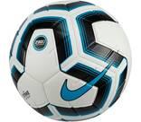 Vorschau: NIKE Ball TRK TEAM 290G - SP20