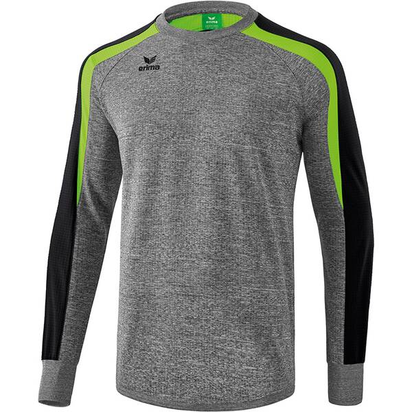 ERIMA Herren Liga 2.0 Sweatshirt Grau