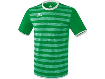 ERIMA Herren Barcelona Trikot Grün
