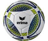 Vorschau: ERIMA Ball Senzor Training