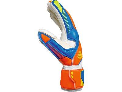 Erima Torwarthandschuh Premier Training 2.0 blau