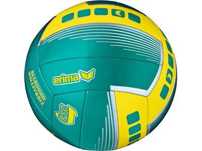 ERIMA Allround Volleyball Grün