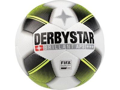 DERBYSTAR Ball Brillant APS Future Weiß