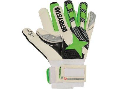 DERBYSTAR Herren Handschuhe APS Evolution 17.1 Weiß