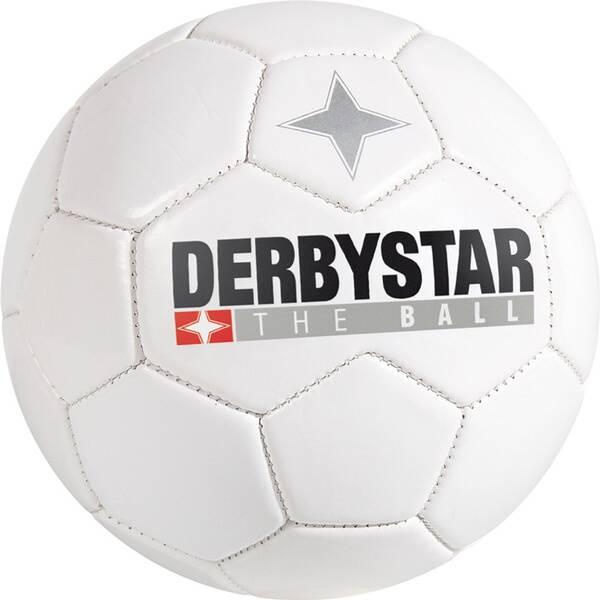 DERBYSTAR Ball Minifu