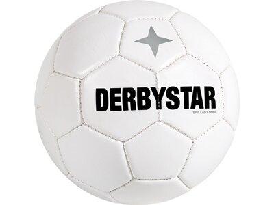 DERBYSTAR Ball Minifu Weiß