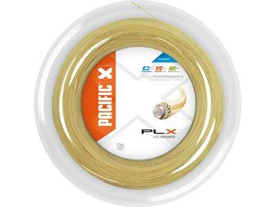 PACIFIC PLX Braun