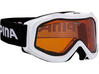 ALPINA Skibrille GRAP D Schwarz