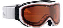Vorschau: ALPINA Skibrille Challenge 2.0 QM