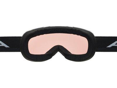 ALPINA Skibrille Pheos QVMM Grau