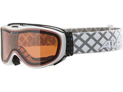 ALPINA Skibrille CHALLENGE S 2.0 Braun
