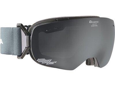 ALPINA Skibrille GRANBY S Grau