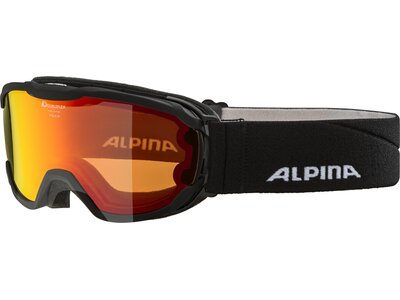 "ALPINA Kinder Skibrille ""Pheos Jr. MM"" Schwarz"