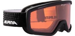 """Vorschau: ALPINA Ski- und Snowboardbrille """"Scarabeo QH"""""""