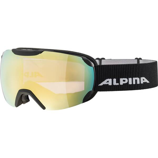 ALPINA Herren Brille PHEOS ML