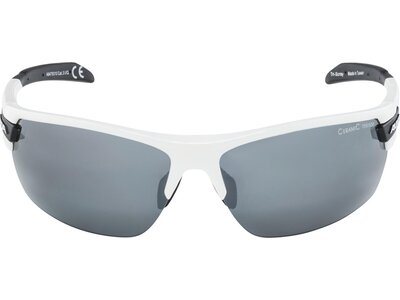 "ALPINA Sportbrille ""Tri-Scray"" Braun"