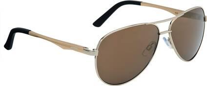 ALPINA Sportbrille A 107 silver matt CMRG