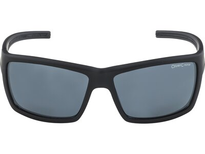 "ALPINA Herren Sonnenbrille ""Slay"" Grau"