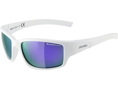 ALPINA Herren Brille Keekor P Blau