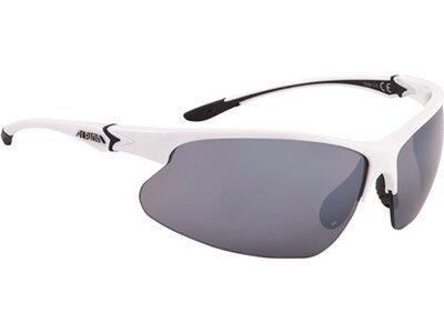 ALPINA Brille DRIBS 3.0 Grau