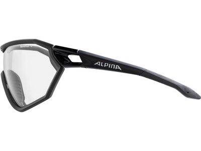 ALPINA Brille ALPINA S-WAY Grau
