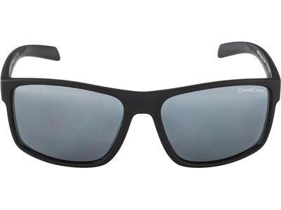 ALPINA Herren Brille NACAN I Grau