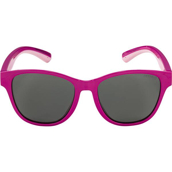 ALPINA Kinder Brille FLEXXY COOL KIDS II