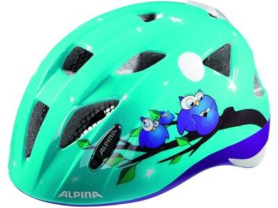 ALPINA Kinder Helm Ximo Flash Winter Grün