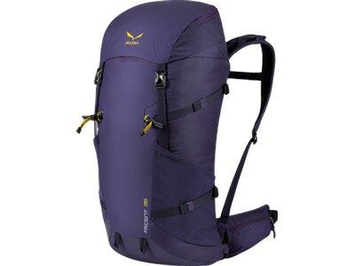 SALEWA Rucksack Ascent 35 BP Grau