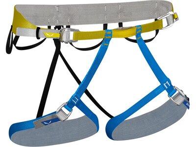 SALEWA Klettergurt Ortles Harness Grau