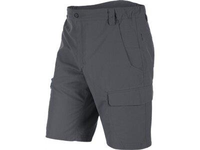 SALEWA Herren Shorts Fanes Seura 2 Dry M Shorts Grau