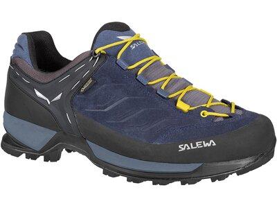 """SALEWA Herren Wanderschuhe """"Mountain Trainer GTX"""" Blau"""