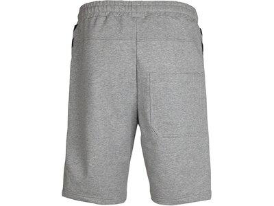 HUMMEL Herren Shorts CLASSIC BEE AAGE Grau