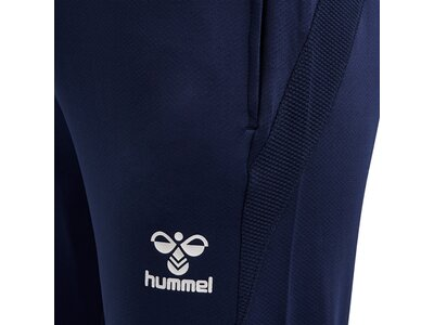 HUMMEL Herren Sporthose hmlLEAD FOOTBALL PANTS Blau