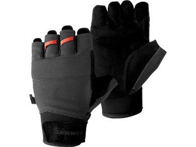 MAMMUT Handschuhe Pordoi Glove Schwarz