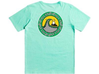 QUIKSILVER Kinder T-Shirt ELECTRICROOTYTH B TEES Grün