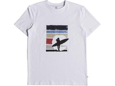 QUICKSILVER Herren T-Shirt Waterman Endless Summer Grau