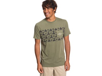 QUIKSILVER Herren Taschen-T-Shirt Waterman Planet Of The Lost Grau