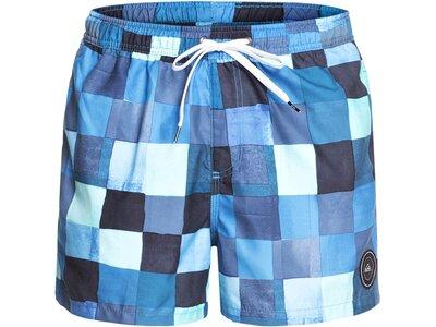 QUIKSILVER Herren Schwimmshorts Resin Check 15 Blau