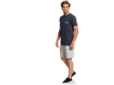 QUIKSILVER Herren T-Shirt Paddle Forward Grau