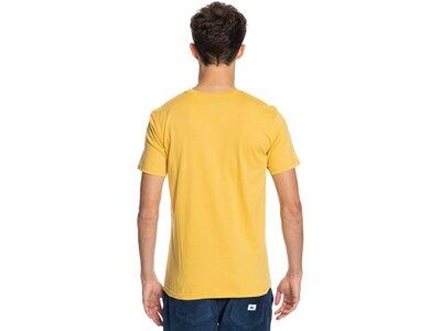 QUIKSILVER Herren T-Shirt COMPLOGOSS M TEES Braun