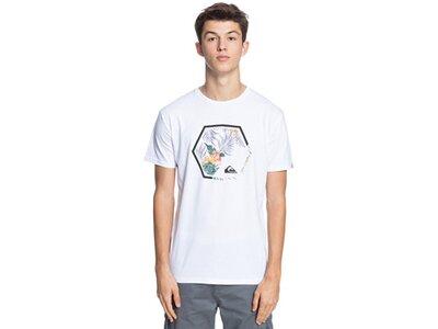 QUIKSILVER Herren T-Shirt FADINGOUTSS M TEES Pink