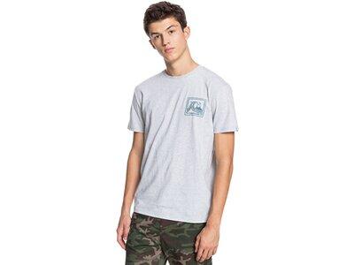 QUIKSILVER Herren T-Shirt HIGHWAYVAGABONS M TEES pink