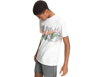 QUIKSILVER Herren T-Shirt PARADISEEXPRESS M TEES Pink