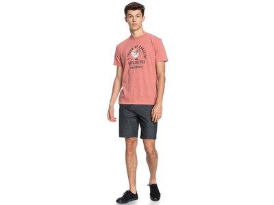 QUIKSILVER Herren T-Shirt QUIETHOURSS M TEES Braun